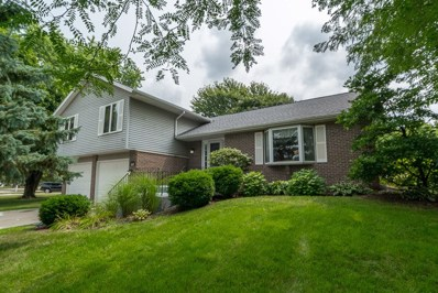 25317 W Willow Drive, Plainfield, IL 60544 - MLS#: 10056668