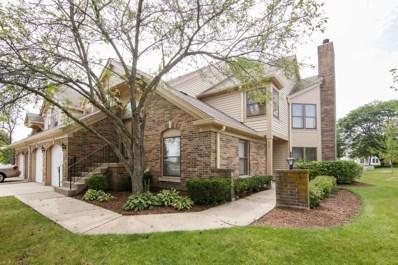 307 Satinwood Terrace, Buffalo Grove, IL 60089 - MLS#: 10058098