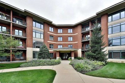 855 E 22nd Street UNIT 215, Lombard, IL 60148 - MLS#: 10058652