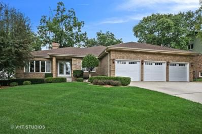 13016 W Creekside Drive, Homer Glen, IL 60491 - MLS#: 10059245