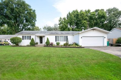 113 Shorewood Lane, Shorewood, IL 60404 - MLS#: 10059531