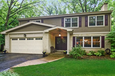 141 E Forest Lane, Palatine, IL 60067 - #: 10059952