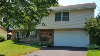 229 Terry Court, Woodstock, IL 60098 - #: 10059972