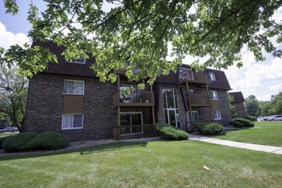 19330 Wolf Road UNIT 2, Mokena, IL 60448 - MLS#: 10060731