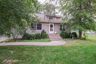 1756 Suzy Street, Lake Holiday, IL 60548 - MLS#: 10060844