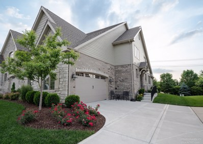 9868 Folkers Drive, Frankfort, IL 60423 - #: 10061068