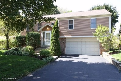 904 S Summit Street, Barrington, IL 60010 - MLS#: 10061666