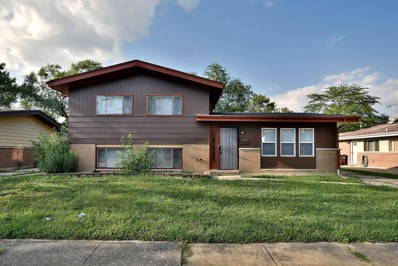 228 Early Street, Park Forest, IL 60466 - #: 10062216