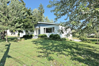 711 Division Street, Woodstock, IL 60098 - #: 10062444