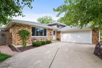 113 Kimber Drive, New Lenox, IL 60451 - #: 10063014