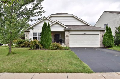 956 Oxford Court, Pingree Grove, IL 60140 - #: 10063096