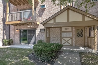 803 S Dwyer Avenue UNIT A, Arlington Heights, IL 60005 - MLS#: 10063230