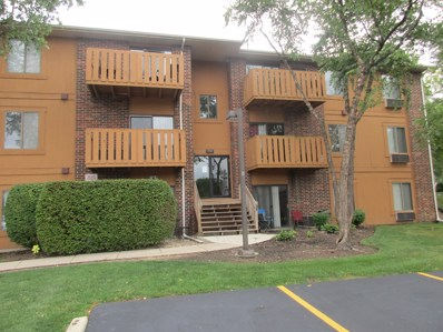 718 Rodenburg Road UNIT 207, Roselle, IL 60172 - #: 10063397