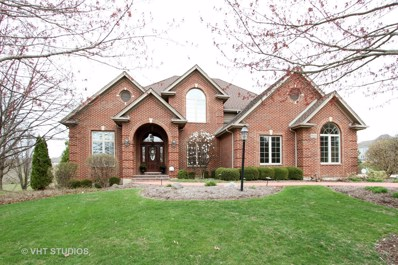 9555 Player Court, Crystal Lake, IL 60014 - #: 10063945