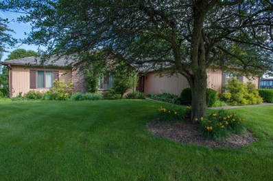 681 Skye Lane, Inverness, IL 60010 - #: 10063950