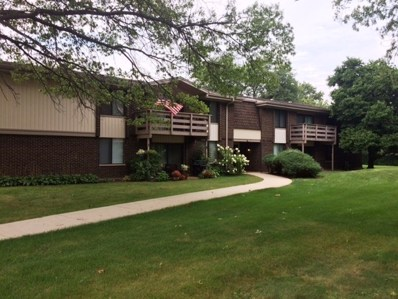 310 Greenbriar Road UNIT 2D, Glen Ellyn, IL 60137 - MLS#: 10063979