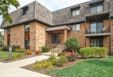 12 Oak Creek Drive UNIT 2213, Buffalo Grove, IL 60089 - MLS#: 10064265