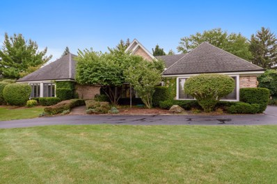5322 Fenview Court, Long Grove, IL 60047 - #: 10064366