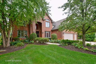 233 Sawgrass Drive, Palos Heights, IL 60463 - #: 10064377