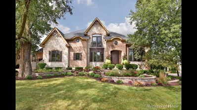920 Jenna Court, Glen Ellyn, IL 60137 - MLS#: 10064441