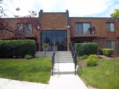 712 Tipperary Court UNIT 2A, Schaumburg, IL 60193 - #: 10064739