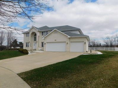 22306 Jeanette Court, Frankfort, IL 60423 - MLS#: 10064941