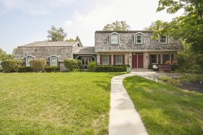 535 BUTTERNUT Trail, Frankfort, IL 60423 - MLS#: 10065146
