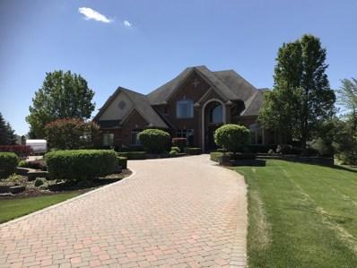 15403 W Wheatstone Drive, Homer Glen, IL 60491 - #: 10065665
