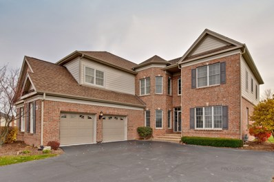 41 Open Parkway NORTH, Hawthorn Woods, IL 60047 - #: 10066044