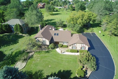 21920 W Kathy Lane, Hawthorn Woods, IL 60047 - MLS#: 10066383