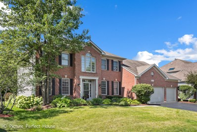 3539 Sweet Maggie Lane, Naperville, IL 60564 - MLS#: 10066696