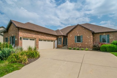 1203 Wales Court, Shorewood, IL 60404 - MLS#: 10066751