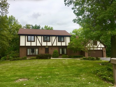 2815 Dartmouth Lane, Olympia Fields, IL 60461 - MLS#: 10066959