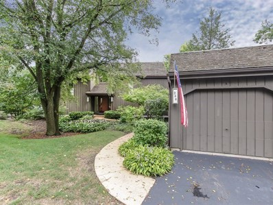 288 Hilltop Court UNIT D, Lake Barrington, IL 60010 - #: 10067007