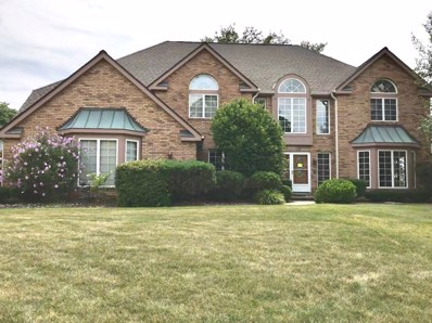 10519 Wildflower Road, Orland Park, IL 60462 - #: 10067316