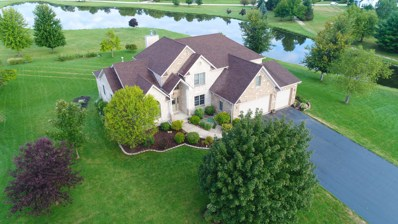 371 Tallgrass Lane, Yorkville, IL 60560 - MLS#: 10067861