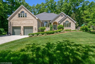 27028 S Pebble Beach Court, Crete, IL 60417 - #: 10068478