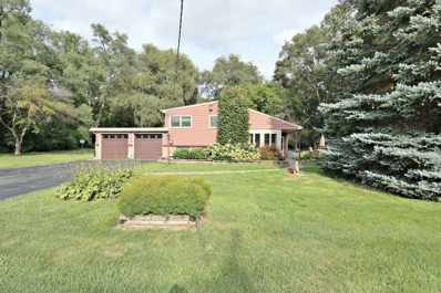 3610 Doty Road, Woodstock, IL 60098 - #: 10068842