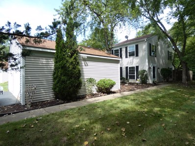 46 Silver Tree Circle, Cary, IL 60013 - MLS#: 10069201