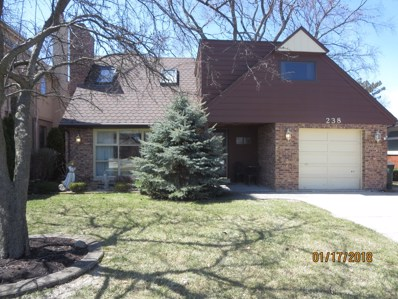238 N Rose Avenue, Park Ridge, IL 60068 - #: 10069858