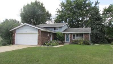 1157 Pheasant Drive, Bradley, IL 60915 - #: 10069965