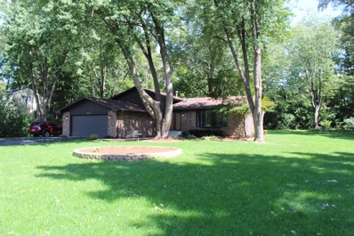 1205 Towpath Lane, Wilmington, IL 60481 - #: 10070084