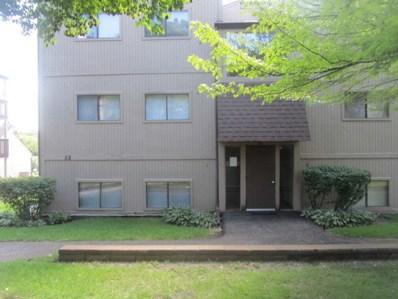 58 Vail Colony UNIT 2, Fox Lake, IL 60020 - MLS#: 10070188