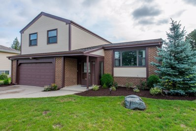 991 Debra Lane, Elk Grove Village, IL 60007 - #: 10070648