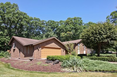 10S350  Argonne Ridge Road, Willowbrook, IL 60527 - #: 10070676