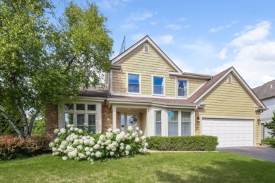 66 Copperwood Drive, Buffalo Grove, IL 60089 - #: 10071710
