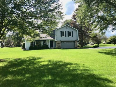 1809 Spring Court, Spring Grove, IL 60081 - #: 10072055