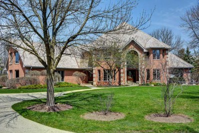 4498 Hamelton Court, Long Grove, IL 60047 - #: 10072114