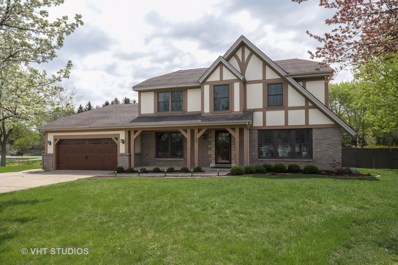 1102 Abbey Court, Libertyville, IL 60048 - #: 10072375