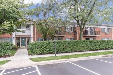 703 E Falcon Drive UNIT C105, Arlington Heights, IL 60005 - MLS#: 10072727